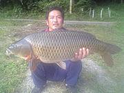 Team Wild Great carps 鯉。
