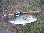 なんでも釣り選手権^-^