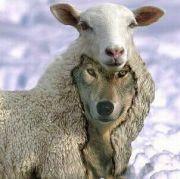 羊の皮をかぶったオオカミ