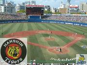 横浜スタジアムで阪神を応援する