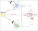 T細胞研究コミュニティ