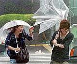 雨の日は傘裏返して雨ためました