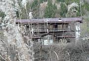 秩父の廃墟 小倉沢を守る会
