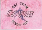 スキーなかま(CAVOS)