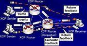eXplicit Control Protocol