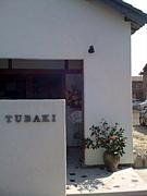 山茶 TUBAKI