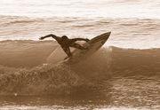 umi surf shop