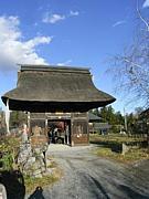 関東のお寺・神社巡り