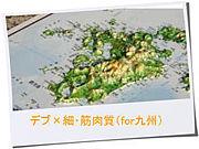 デブ×細・筋肉質 (for九州)