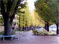 日本大学第二中学・高等学校