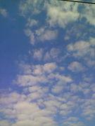 空とあなたの物語xcx*