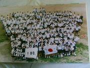 福島南高校 14期