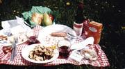 picnicmania