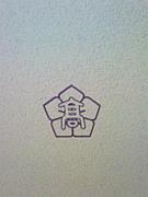智辯学園(奈良)2007卒業★2類