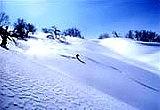 北海道スキー・スノボで遊ぶ!!