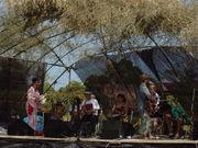 観音バンド