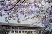 京都市立嵐山小学校