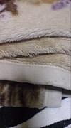 毛布のハジの繊維でこちょこちょ