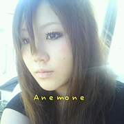 SINGER 「anemone」