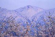 富山の朝日町