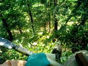 森のワークキャンプ Swf TOKYO