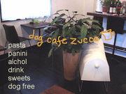 dog cafe zucca