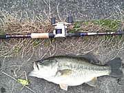 琵琶湖バス釣り協同組合