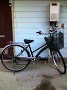 チーム 自転車オンナ