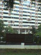 ☆ena☆ シンガポール校