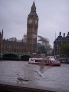 1978年生まれ ロンドン住民