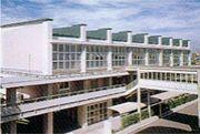 安城学園卓球部