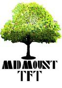 MID MOUNT TFT