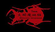 Team.ハンミョウ