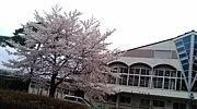 ♯狭山緑陽高校♯