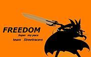 FREEDOM(走り屋)