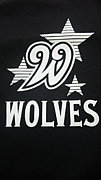 草野球S.Wolves関東版