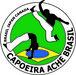Capoeira Ache Brasil