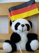 ドイツで妊娠・出産・育児