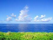 めんそ〜れ沖縄 公務員採用試験