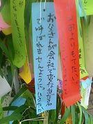 星に願いを〜七夕の笹飾り