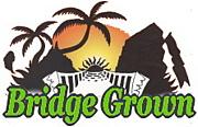 BRIDGE GROWN