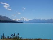 We love New Zealand��
