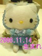 2006年11月14日生まれ