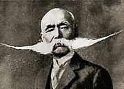 プロペラ髭