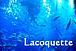 Lacoquette