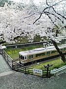 山北町(神奈川)