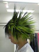 パネルヘアー