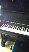 男性ピアノ講師