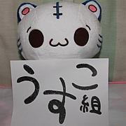 兵庫USCO組
