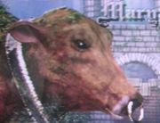 巨大牛メリーを見守る会